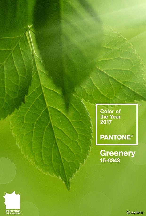 Se mettre au vert va prendre tout son sens cette année