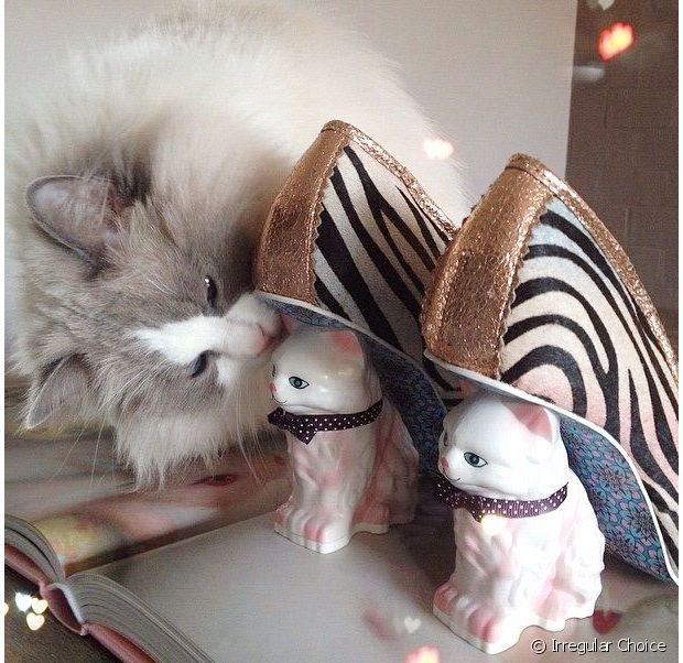 Licornes, lapins et chats : Irregular Choice est un pro de la mignonnerie